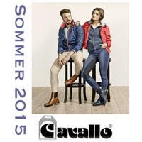 Cavallo-Summer-2015