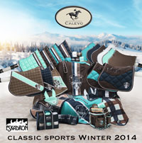 classicsportshw14-coll