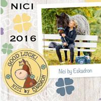Eskadron Nici-HW2016/17