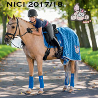 Eskadron Nici-HW2017/18