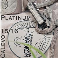 Eskadron Platinum2015