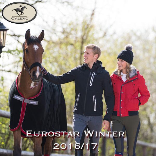 eurostarwinter16