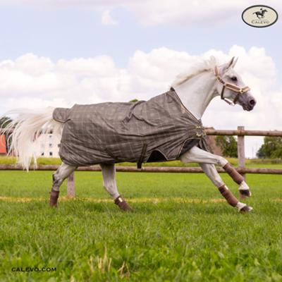 Eskadron Turnout Rug BETA OXFORT CHECK - HERITAGE 2019 CALEVO.com Shop