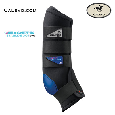 Veredus - MAGNETIK Stable Boot EVO hinten CALEVO.com Shop