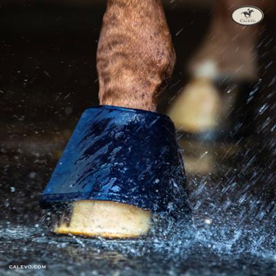 WATER BOOT - Hufglocken CALEVO.com Shop