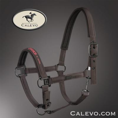 Eskadron - Halfter GLOSSY - PLATINUM -- CALEVO.com Shop