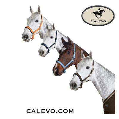 Eskadron - Halfter Double Pin GLOSSY - CLASSIC SPORTS CALEVO.com Shop