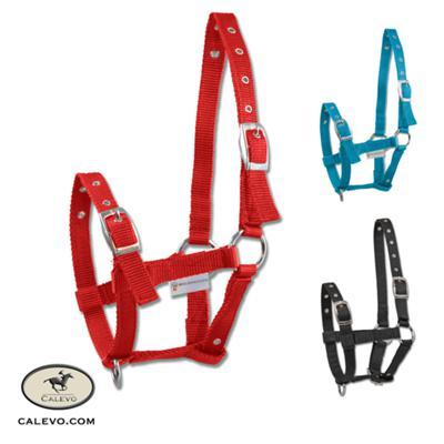 CBL - Fohlenhalfter aus Nylon -- CALEVO.com Shop