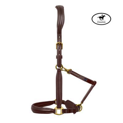 Passier - Leder Stallhalfter -- CALEVO.com Shop