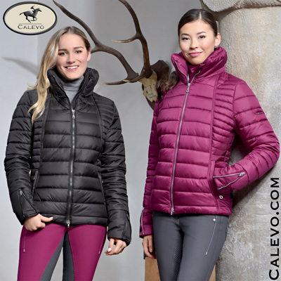 Pikeur - Damen Steppjacke AKITA - NEXT GENERATION CALEVO.com Shop