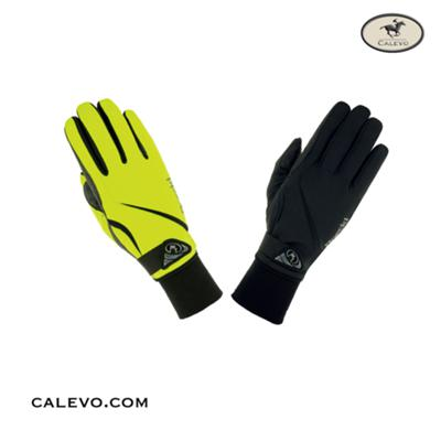 Roeckl - Winter Windstopper Softshell Handschuhe WISMAR -- CALEVO.com Shop