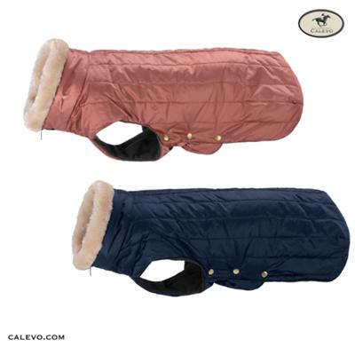 Eskadron - Hundedecke GLOSSY QUILTED - HERITAGE 2019 CALEVO.com Shop