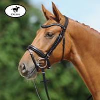 Passier - Trense JUNO CALEVO.com Shop