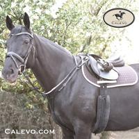 CBL - Vorderzeug JUMP CALEVO.com Shop