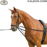 Longierschlaufzügel - Laufferzügel CALEVO.com Shop
