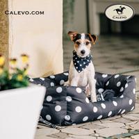 Eskadron - SET Hundehalsband + Leine - NICI Collection CALEVO.com Shop